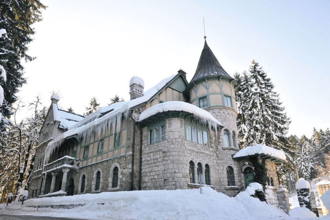Dvorac Stara Sušica 5